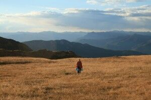 Sauntering Above the Trees - Three Night High Altitude Backpack