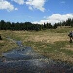 Water is a good thing, even if too much, when backpacking