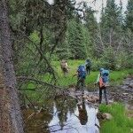 Backpacking Investigation