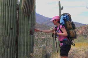 Arizona - Section Hike GET/AZT @ Hiking Trails in Arizona